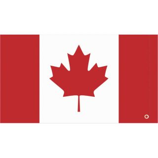 DragonFire Racing Whip Flags Canadian Flag, One-sided Print